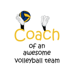 Volleyball coach – Awesome team #3